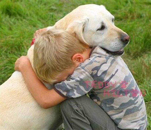 child dog ag