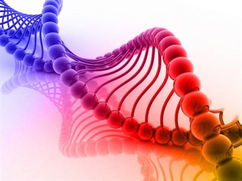 dna genetiko