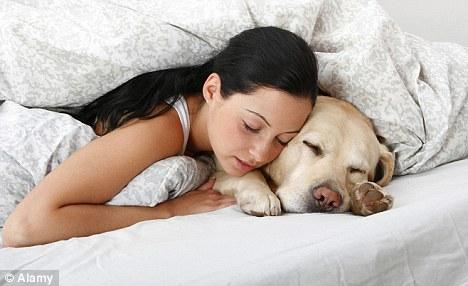sleep withdog