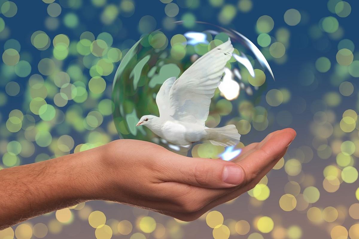 peace-1200