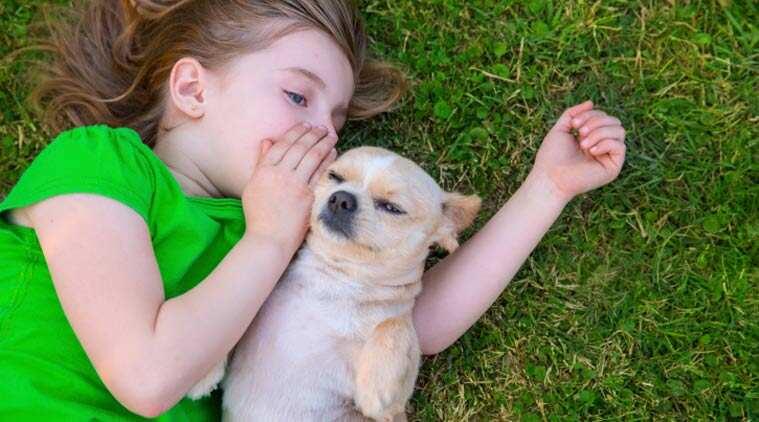 kid-dog-main